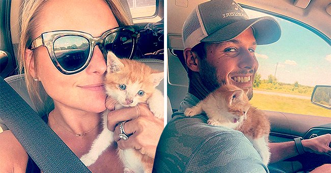 Miranda Lambert Welcomes Tequila the Kitten to the Family after Rescuing It from the Highway