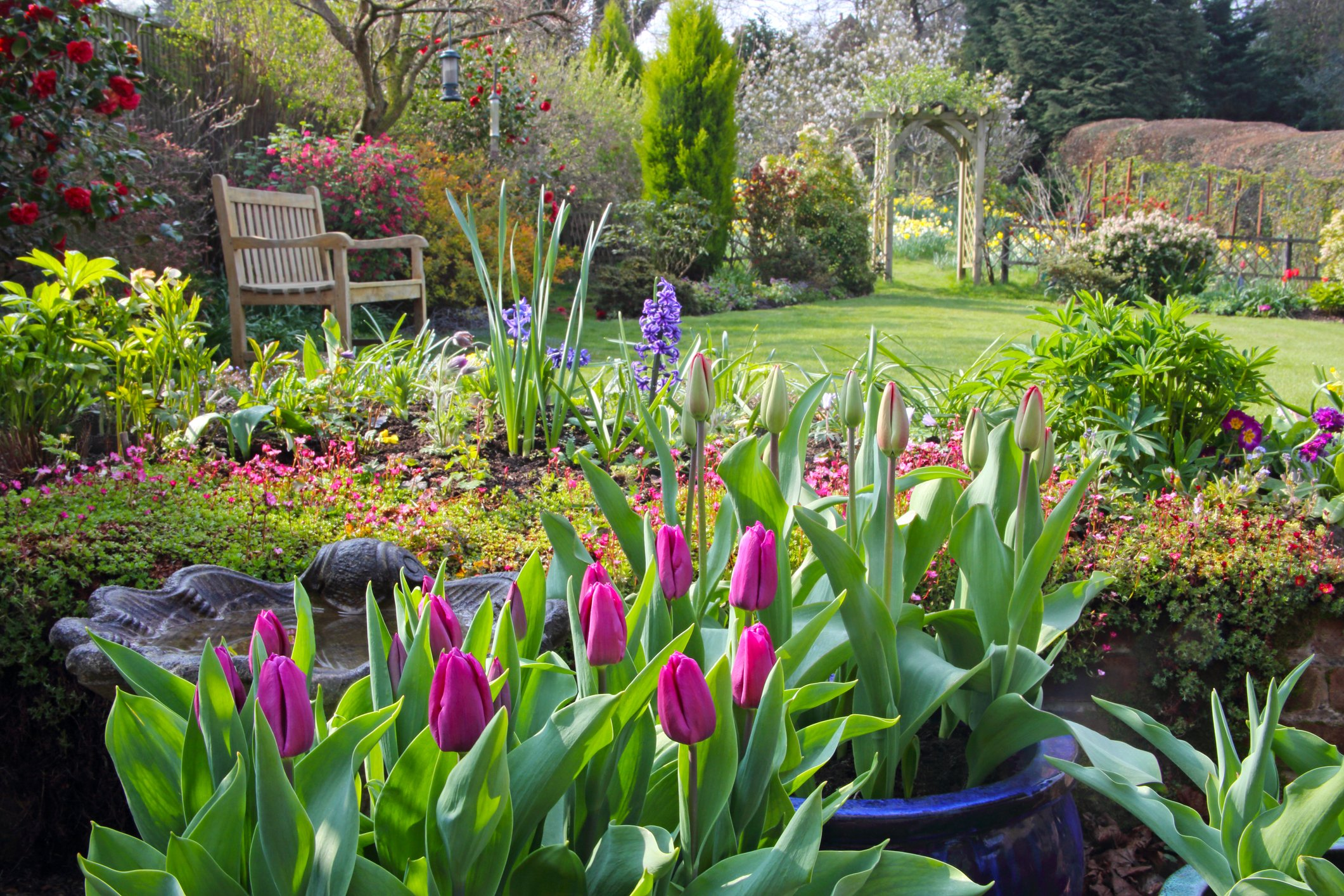 English country garden in spring with pots of tulips on the patio, flowers in the borders, flowering shrubs, a rose arch and a garden seat on the lawn, Haslemere, Surrey, England, UK. | Photo: Getty Images