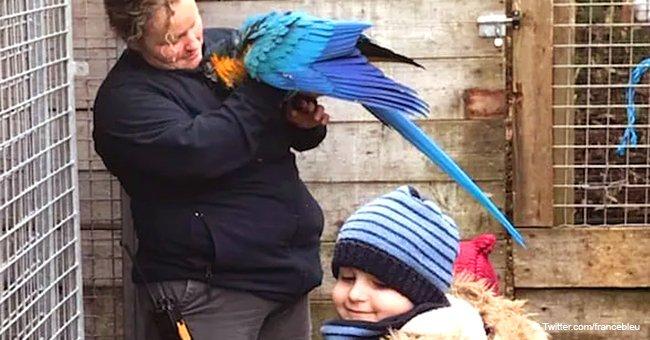 Un enfant de 5 ans atteint d'une tumeur au cerveau vient de réaliser son rêve au Zoo de la Flèche