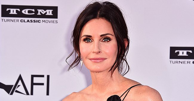 Courteney Cox's Dogs Reportedly Rescued by Good Samaritan after They Ran into Traffic
