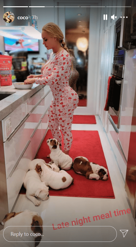 A picture of Coco Austin in her pajamas while making dinner with her puppies lying on the floor. | Photo: Instagram/Coco