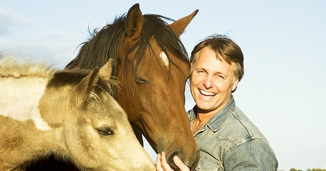 Daily Joke: Man Visits a Ranch to Buy Two Horses for Breeding
