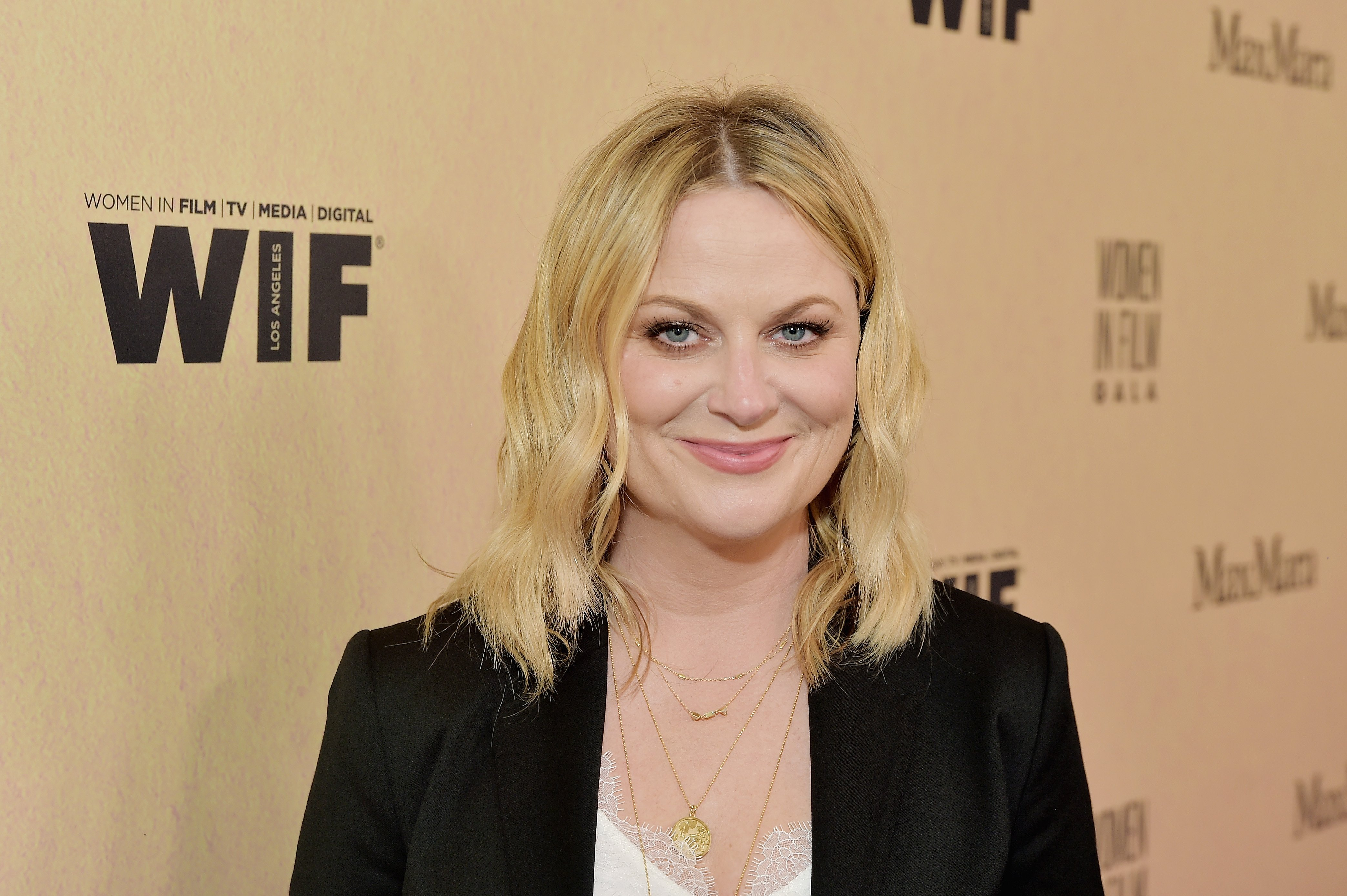 Amy Poehler attends the 2019 Women In Film Annual Gala at The Beverly Hilton on June 12, 2019 in Beverly Hills, California | Photo: GettyImages