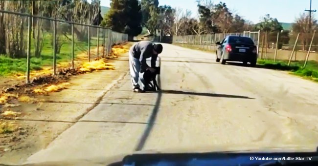 Outraged Driver Filmed the Moment a Dog Owner Pushes His Pet Away as He Abandons It on the Road