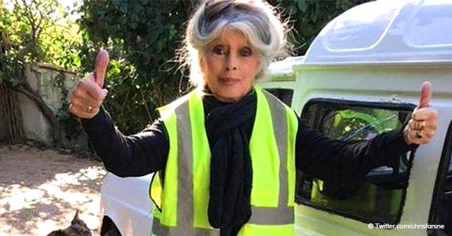 Brigitte Bardot, revêtue d'un gilet dédicacé, a soutenu les 'gilets jaunes' avec un discours enflammé