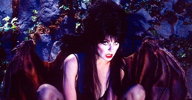 Cassandra Peterson's Life before and after Fame Following 'Elvira: Mistress of the Dark'