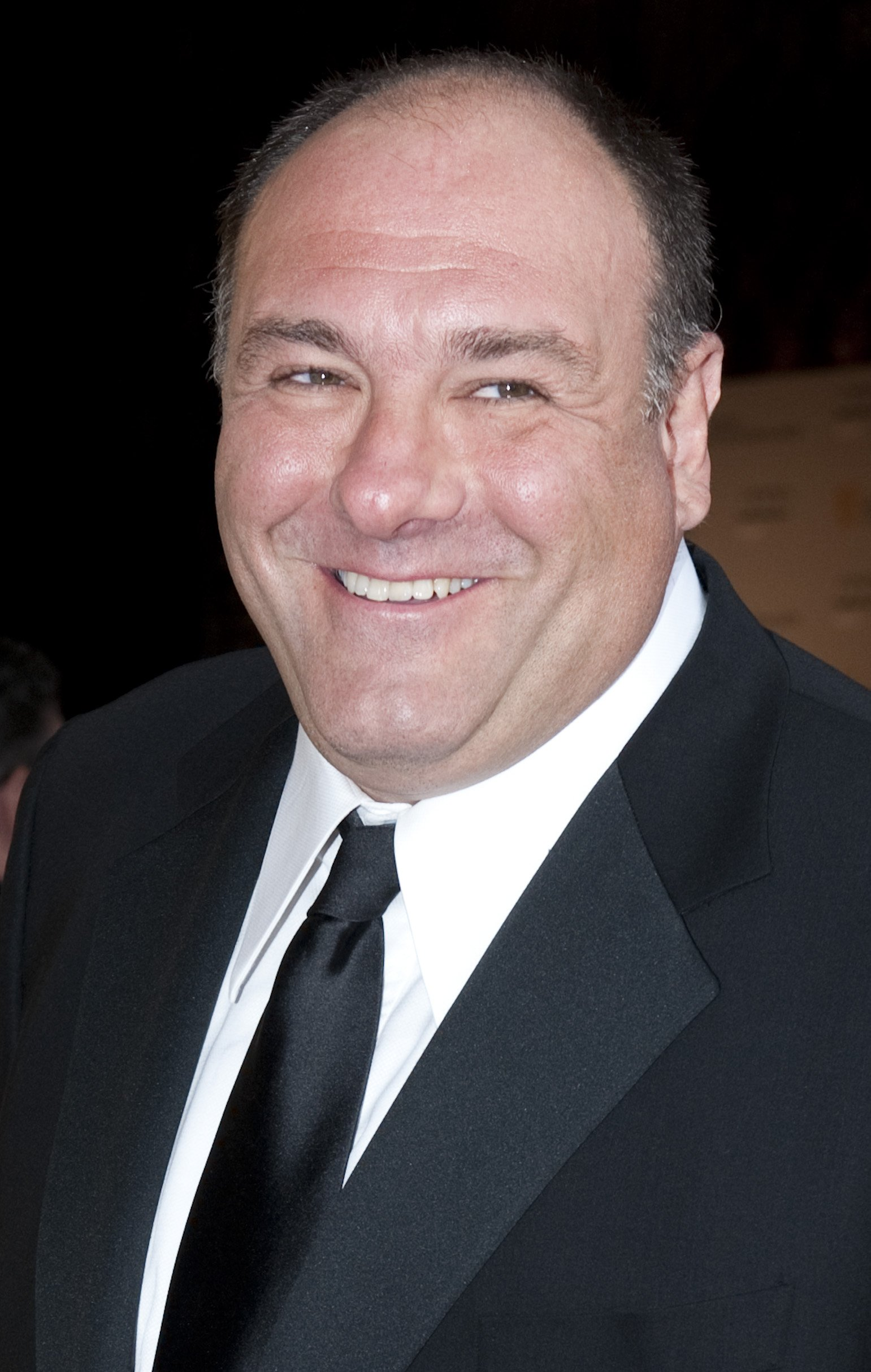 Gandolfini passed away in 2013, at the age of 51. Image credit: Getty/GlobalImagesUkraine