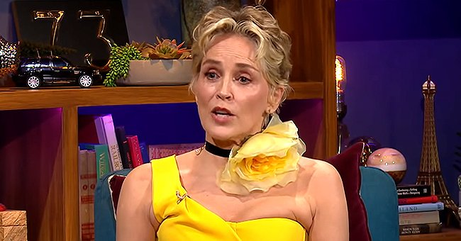 Sharon Stone Reveals She Nearly Died in 2001
