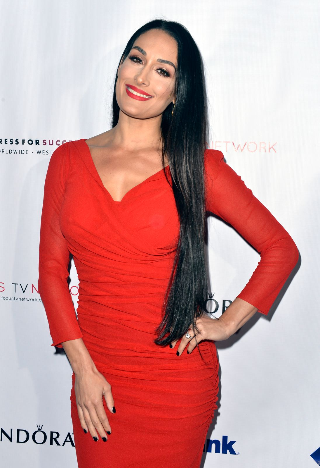 Nikki Bella at the Dress For Success Worldwide-West Seventh Annual Shop For Success Vip Event In Los Angeles on November 30, 2017 | Photo: Getty Images