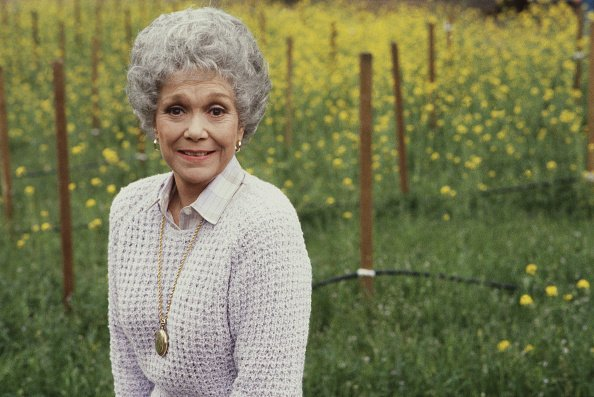 """Jane Wyman poses outdoors by a field of yellow flowers in a publicity photo for the CBS primetime soap opera """"Falcon Crest."""" 