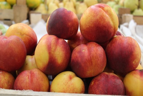 Nectarines at a store. | Photo: Shutterstock
