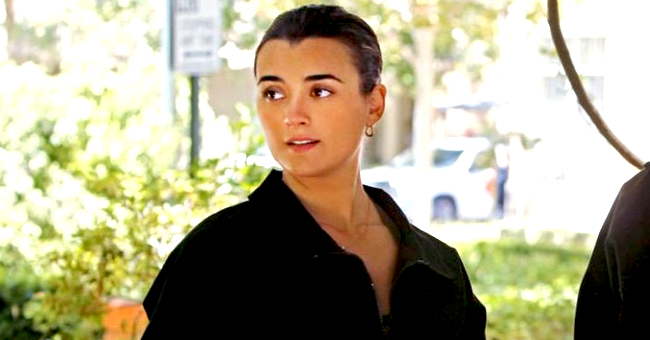 NCIS Fans Are Not Happy after Ziva David Is Absent in Episode 3 of the New Season