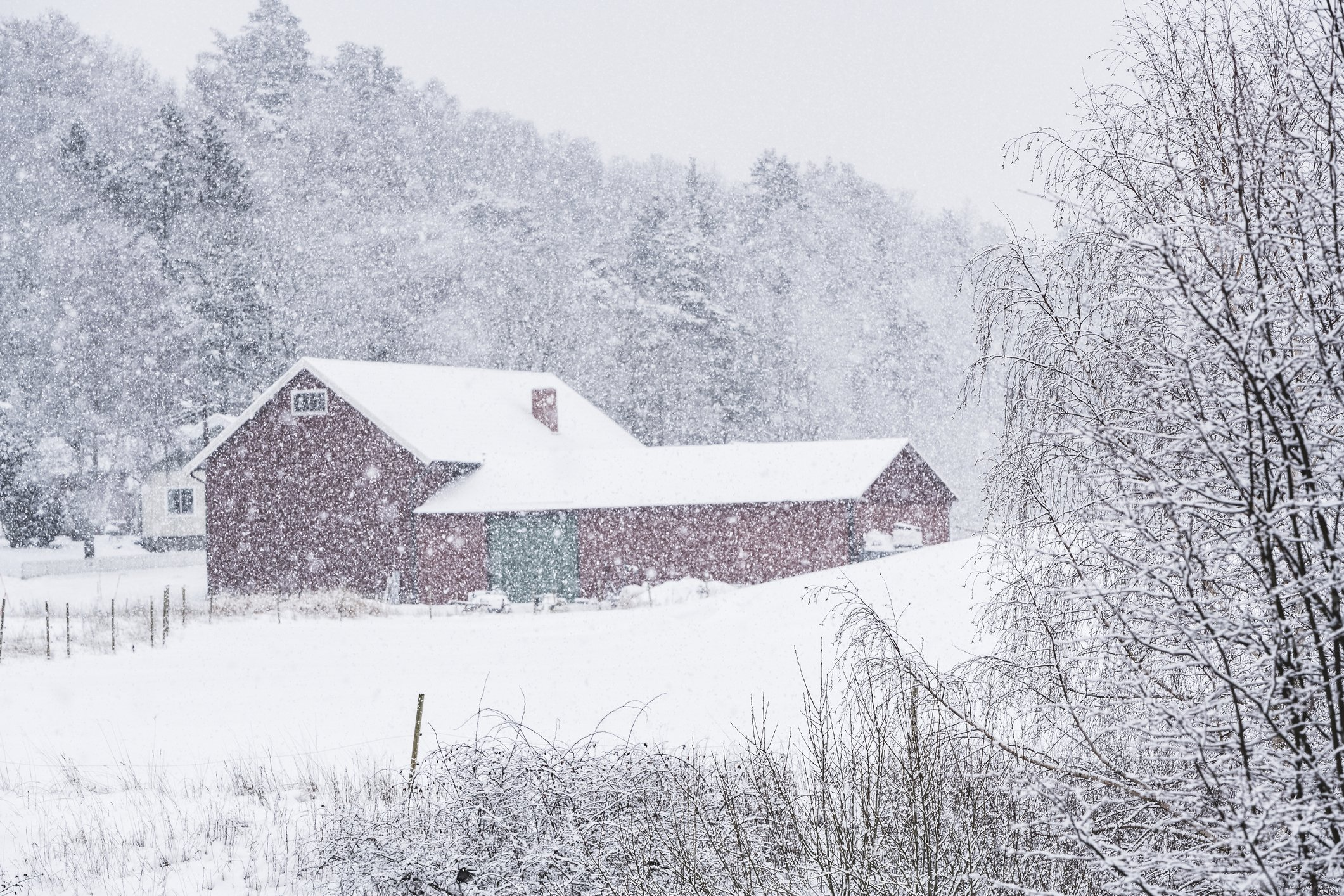 Photo of Agricultural building during winter | Photo: Getty Images