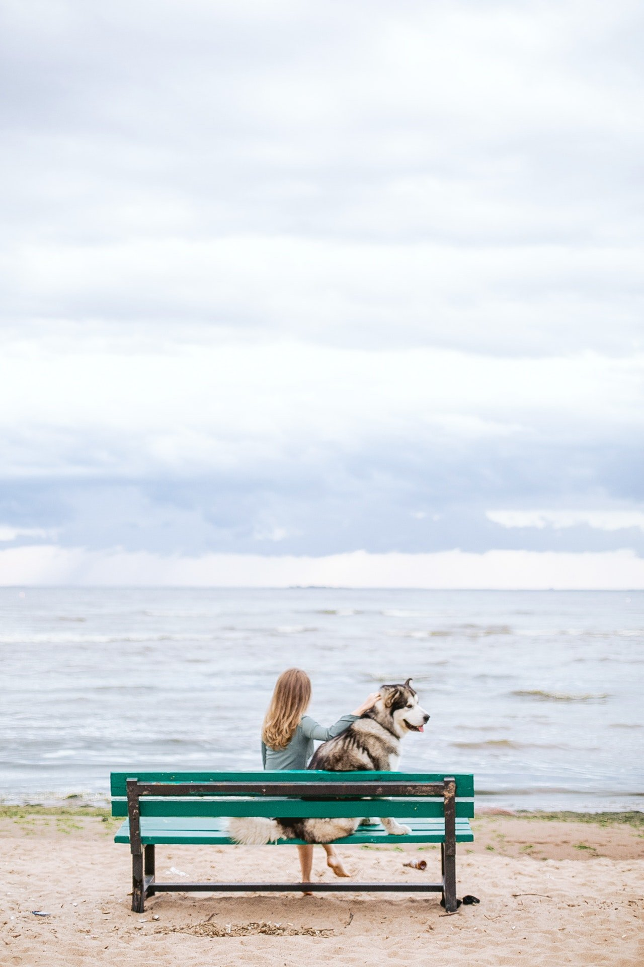 Woman sitting on a bench with her dog| Photo: La Miko from Pexels