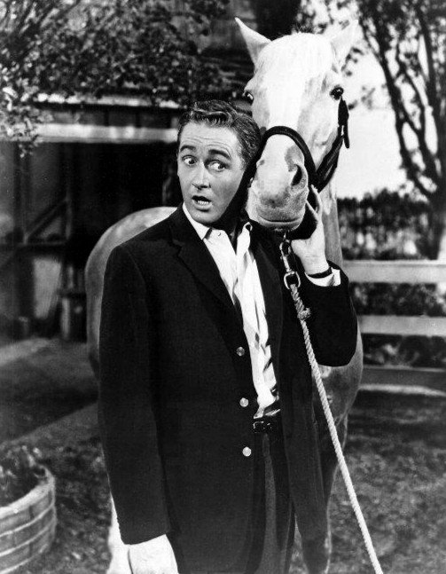 """Photo of Alan Young as Wilbur Post and Mister Ed from the television program """"Mister Ed,"""" circa 1950s. 