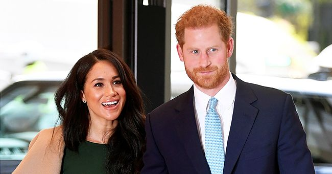 Watch Prince Harry & Meghan Markle's Dog Pula's Unexpected Appearance Amid Serious Announcement