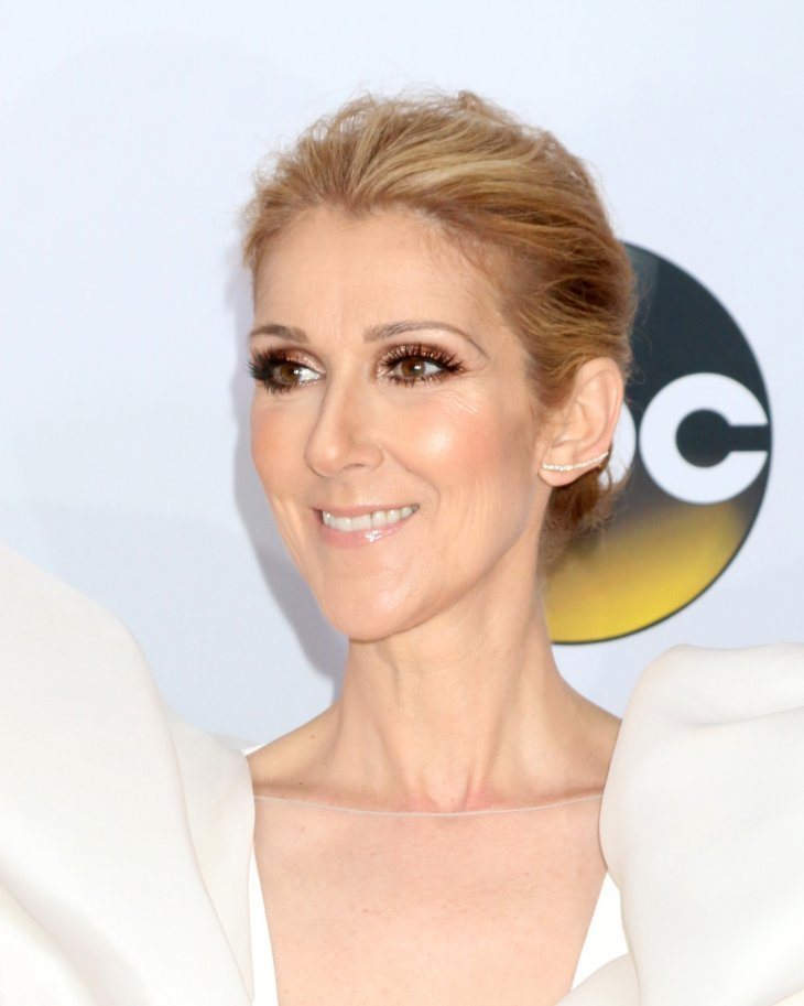 Celine Dion pictured at the 2017 Billboard Awards Press Room, Las Vegas, 2017. | Photo: Shutterstock