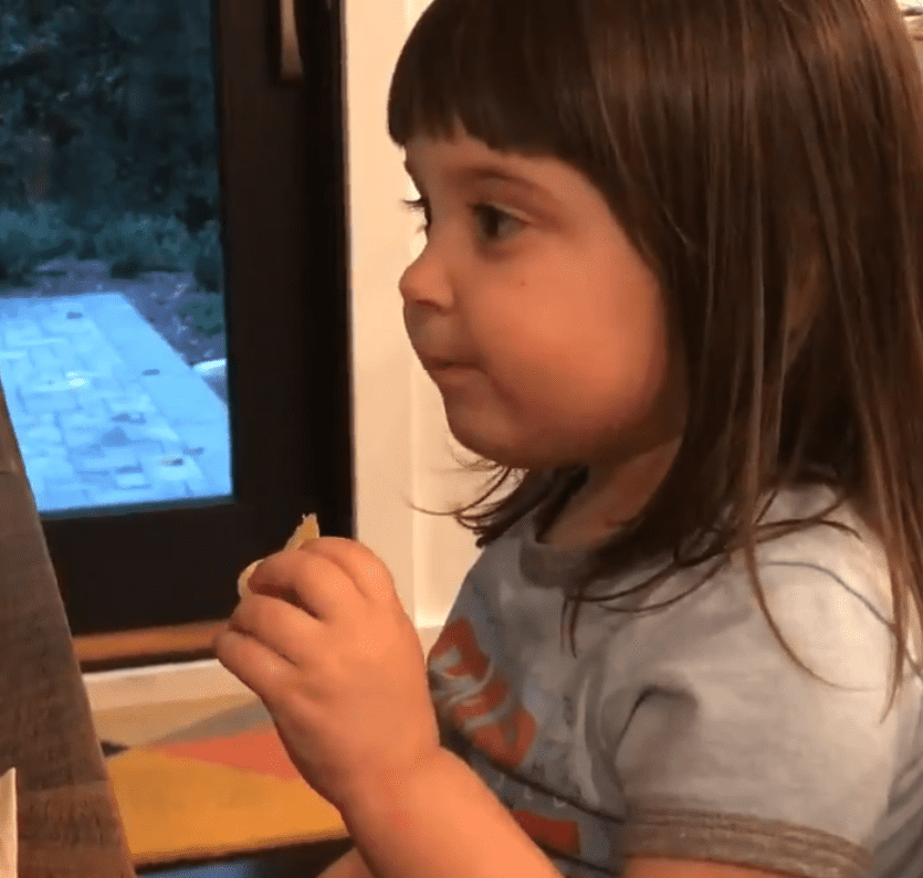 Little girl tasting a salt and vinegar chip for the first time, as shown in the video posted to Twitter on October 3.   Photo: Twitter/Laura Portwood-Stacer, PhD