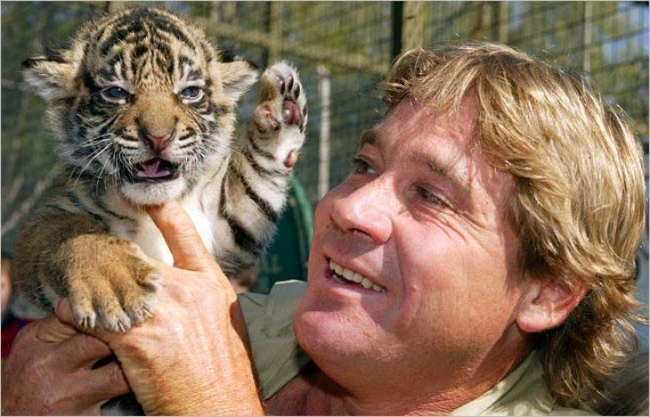 Conservationist Steve Irwin with a new-born Bengal tiger cub | Source: Flickr