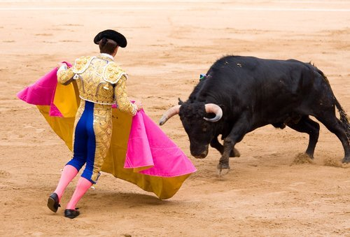 A Spanish bull fight. | Source: Shutterstock.