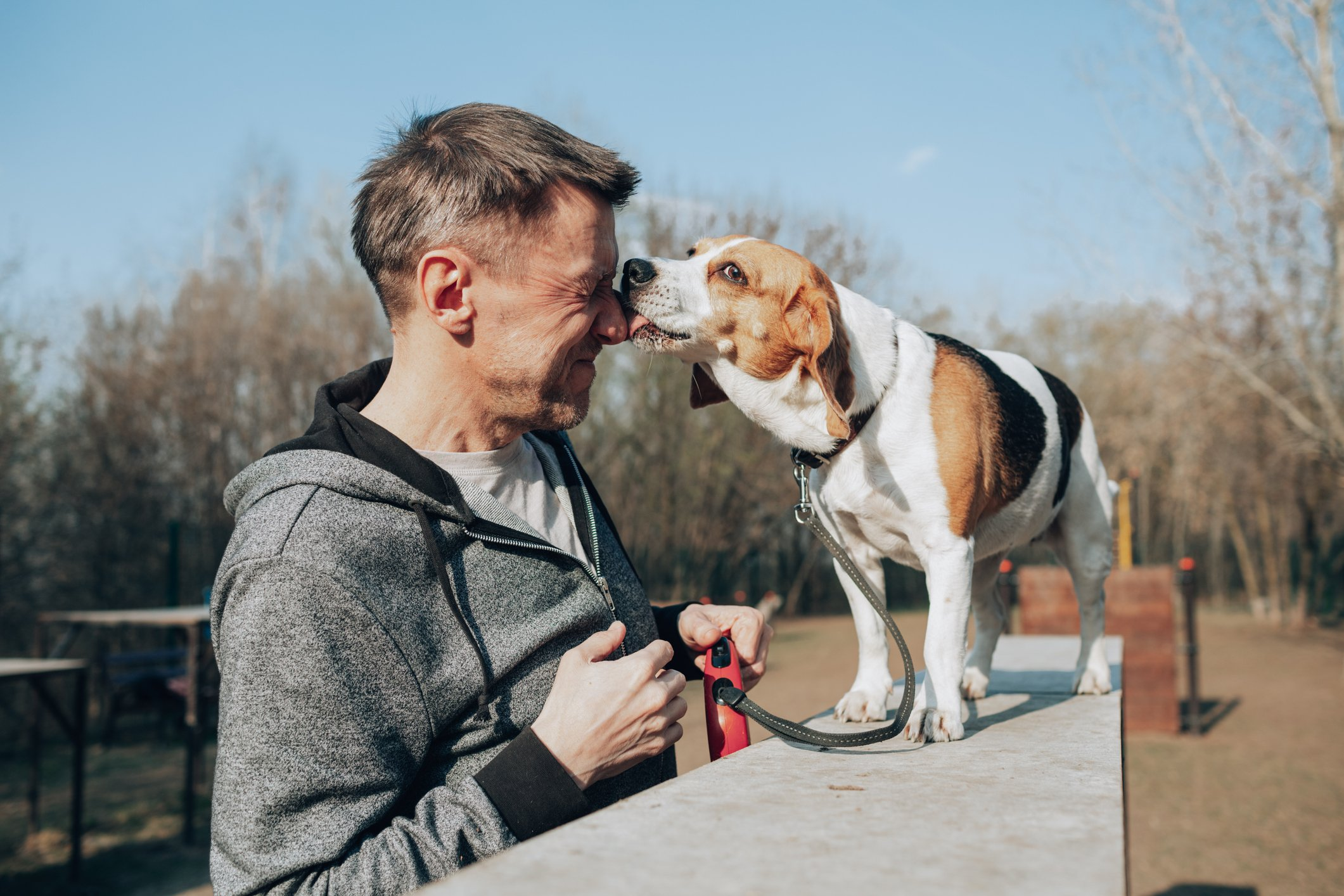 Mann und Beagle | Quelle: Getty Images