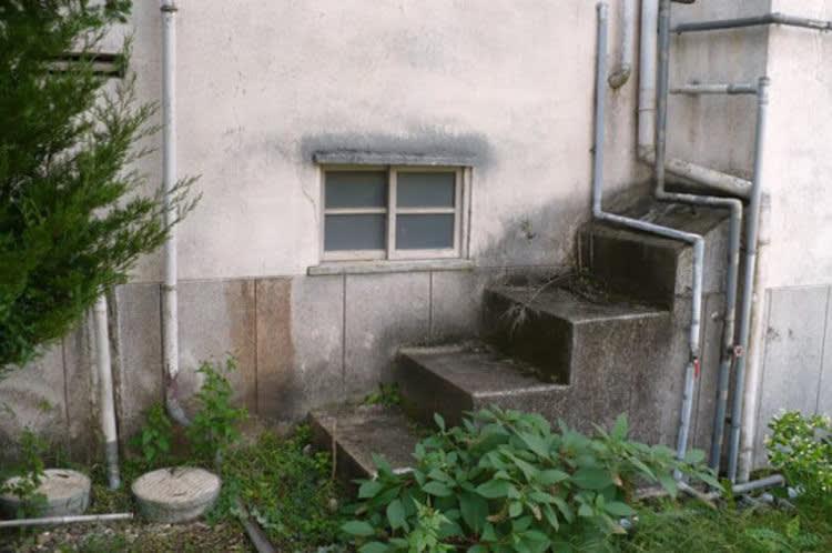 Image Credits: en.247mirror.com
