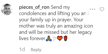 A fans' comment from Suzanne Kay's post | Instagram/suzannekay9