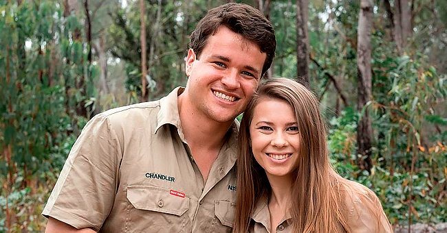 See Pregnant Bindi Irwin with Her Growing Belly on Display in Black Leggings & Chic Ankle Boots