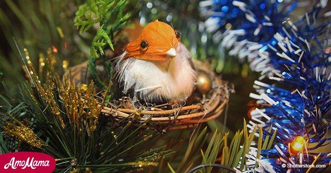 Voici ce que cela signifie si vous voyez un nid d'oiseau sur un arbre de Noël