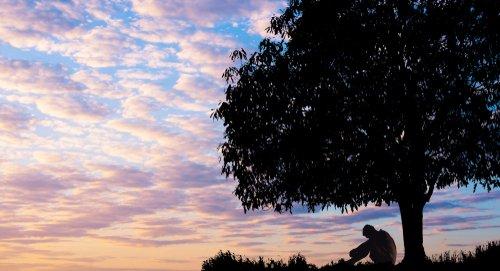 Un hombre infeliz sentado bajo un gran árbol. | Fuente: Shutterstock