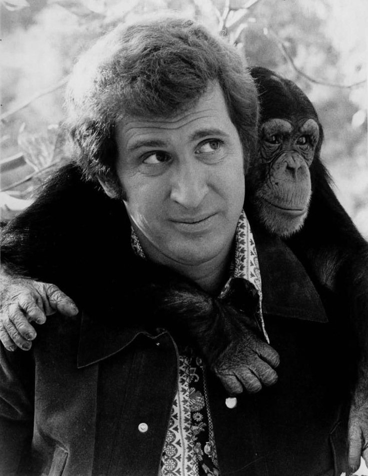 """Ted Bessell and chimpanzee promoting the CBS television series """"Me and the Chimp"""" in 1971 