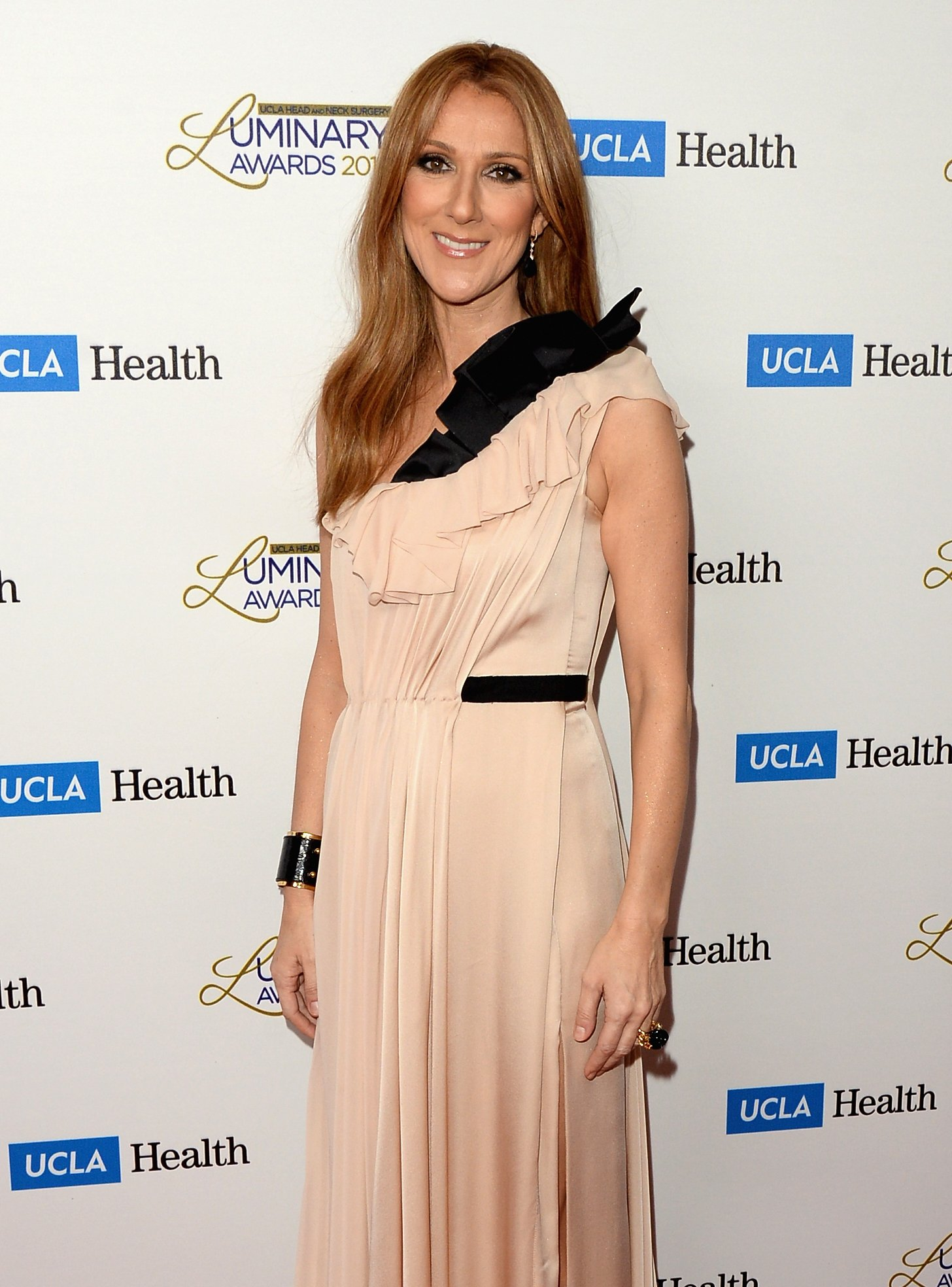 Celine Dion attends the UCLA Head and Neck Surgery Luminary Awards at the Beverly Wilshire Four Seasons Hotel on January 22, 2014, in Beverly Hills, California. | Source: Getty Images.