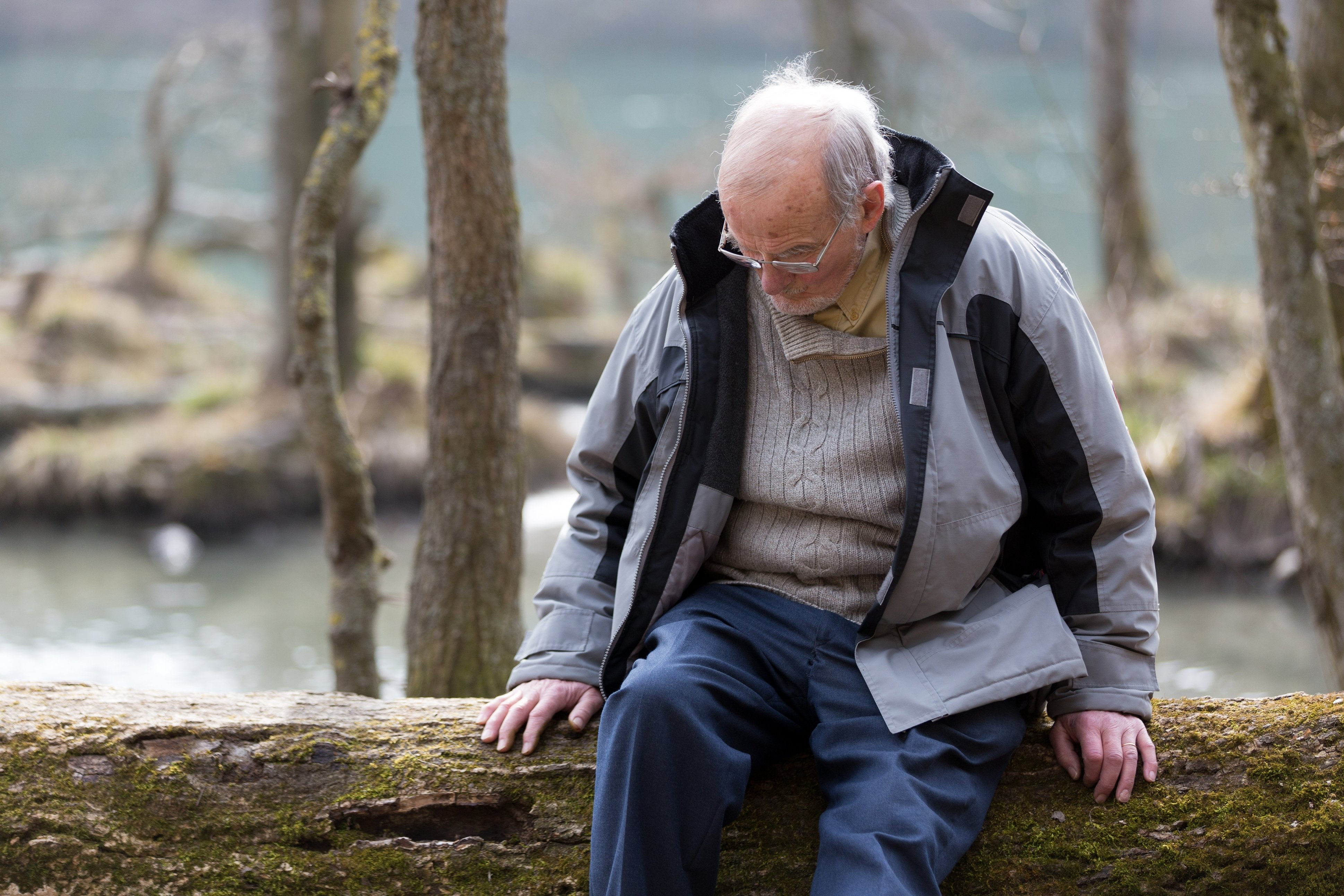 Pensive senior man sitting on tree trunk in nature | Photo: Shutterstock.com