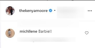 A screenshot of fans' comments from Kenya Moore's post. | Photo: instagram.com/thekenyamoore