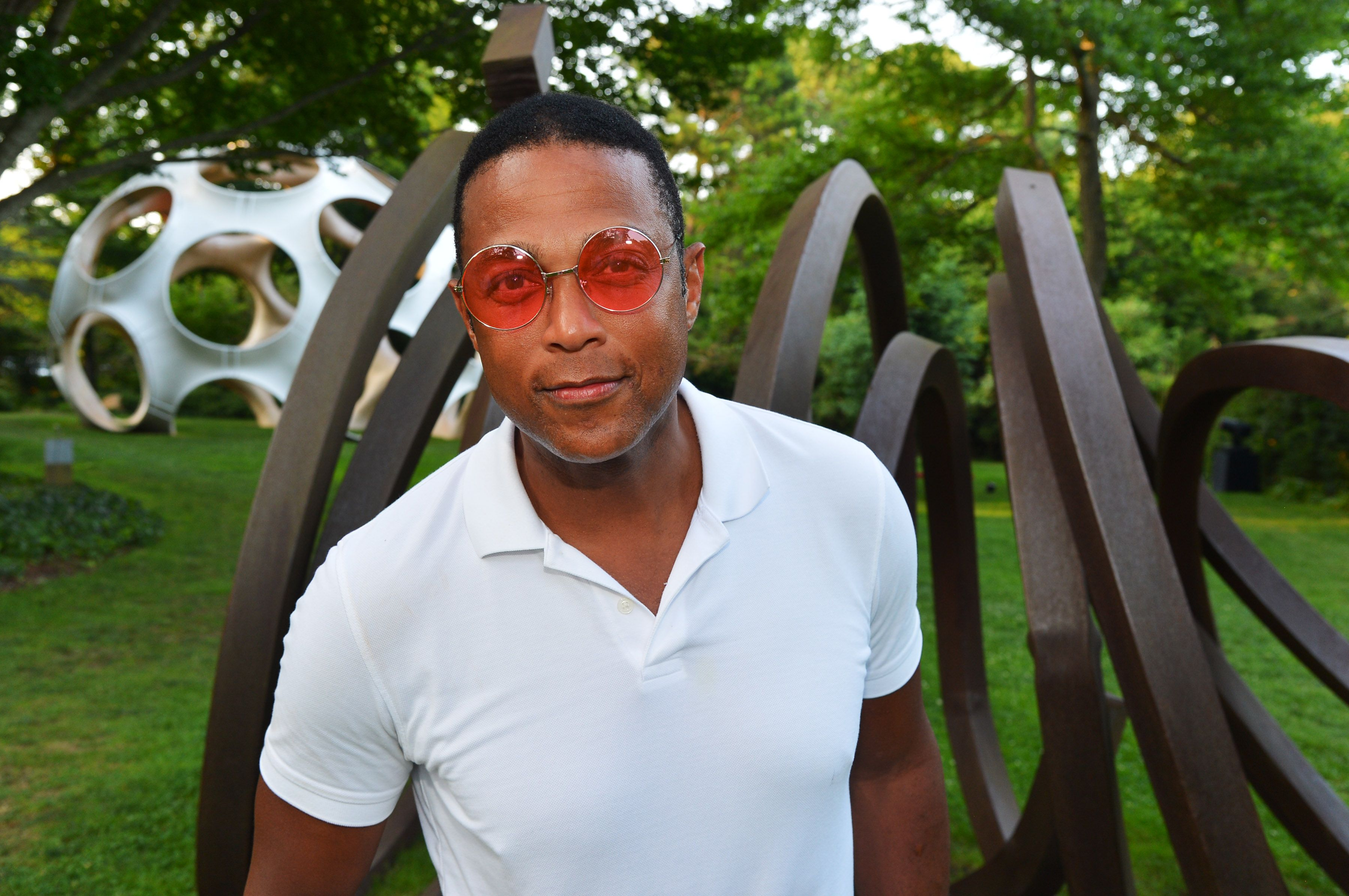 Don Lemon at the LongHouse Reserve 2019 Summer Benefit honoring Julian Schnabel and Donna Karan in East Hampton, New York | Source: Getty Images