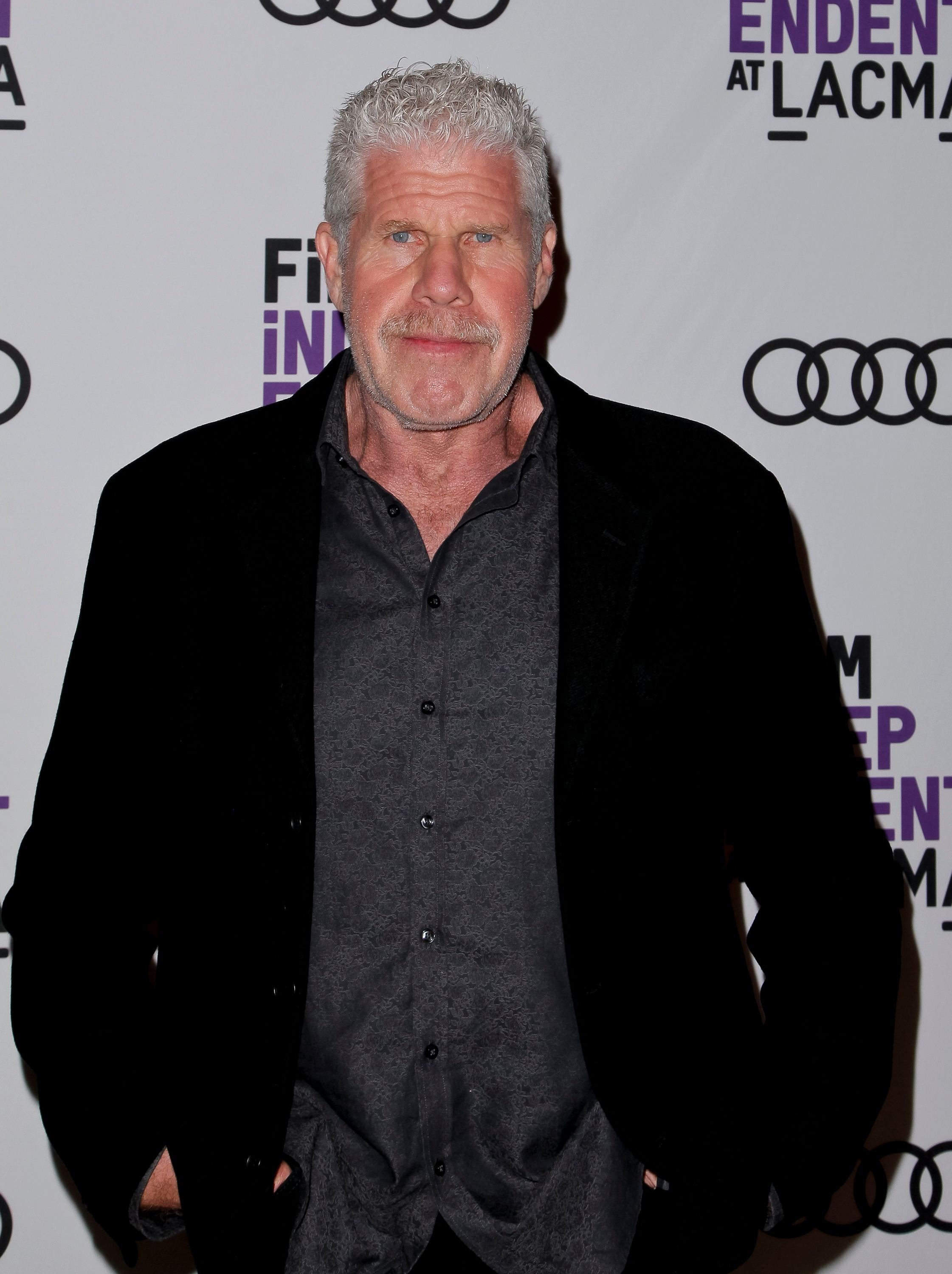 Ron Perlman attends the screening of 'StartUp' at Bing Theater At LACMA on September 28, 2017 in Los Angeles, California. | Source: Getty Images