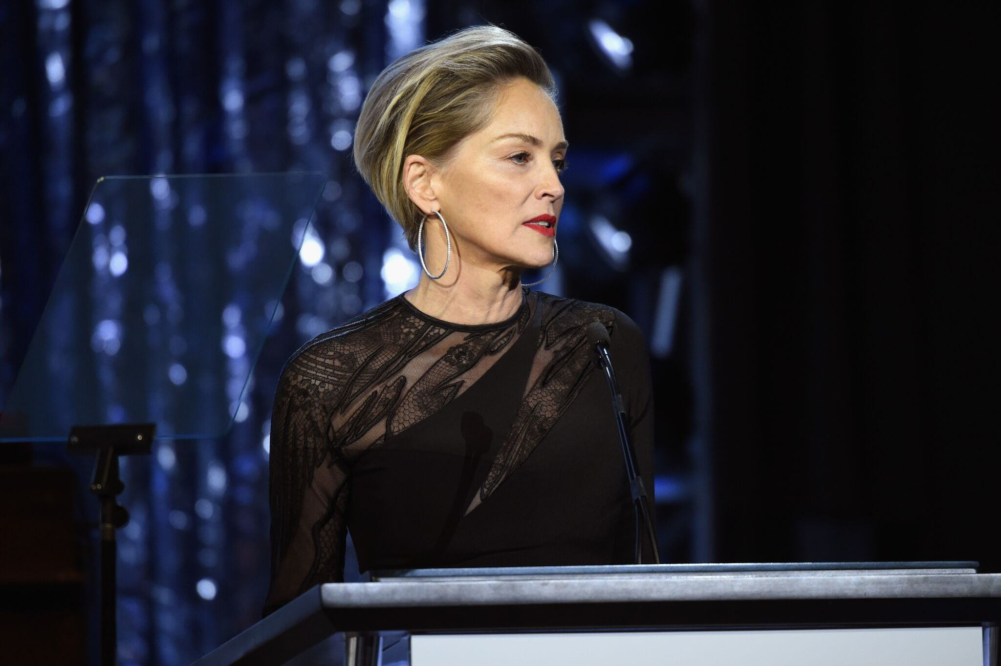 Image Credits: Getty Images / Sharon Stone speaks onstage the 25th Annual Elton John AIDS Foundation's Academy Awards Viewing Party