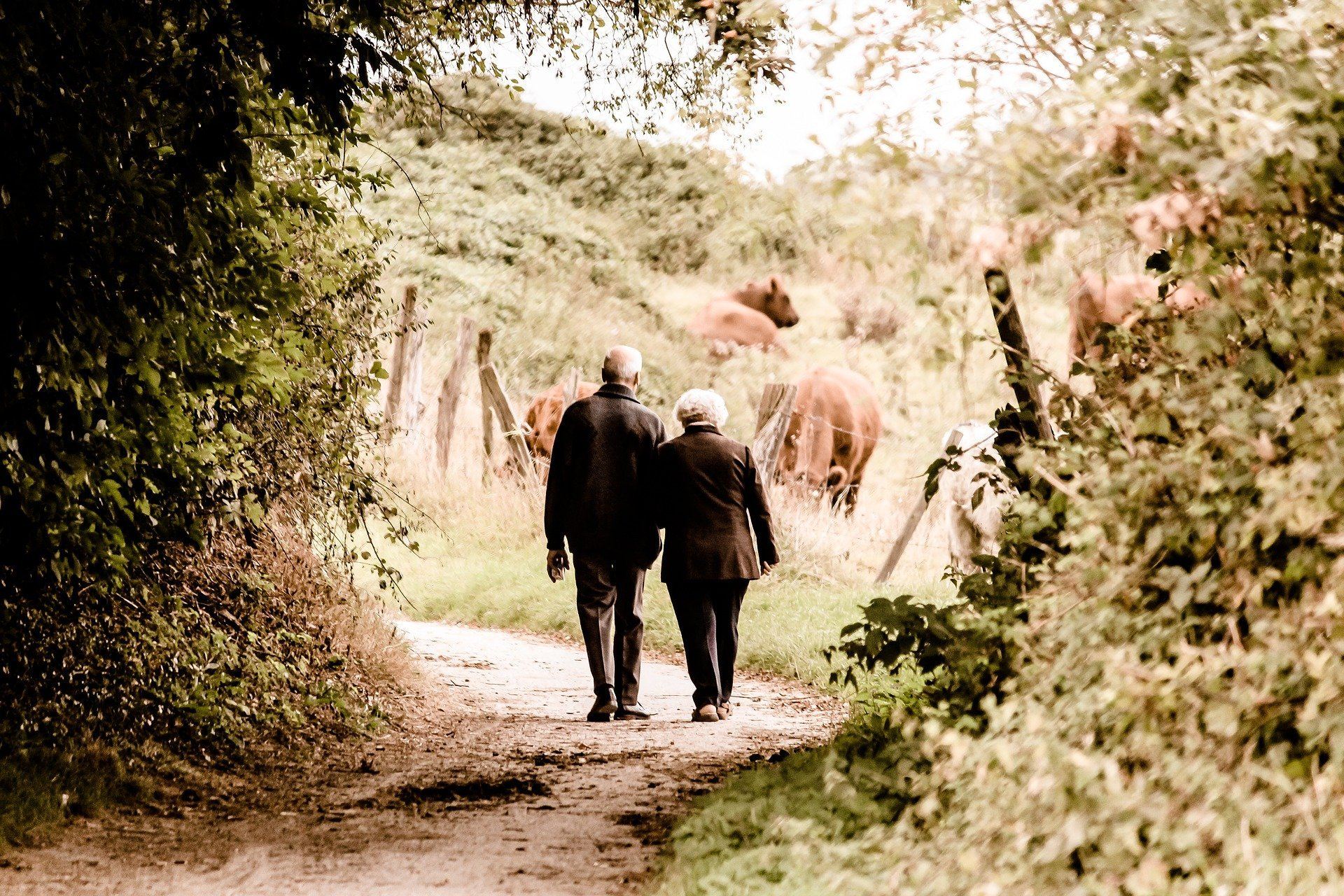 An elderly couple out on a walk in nature. | Source: Pixabay.