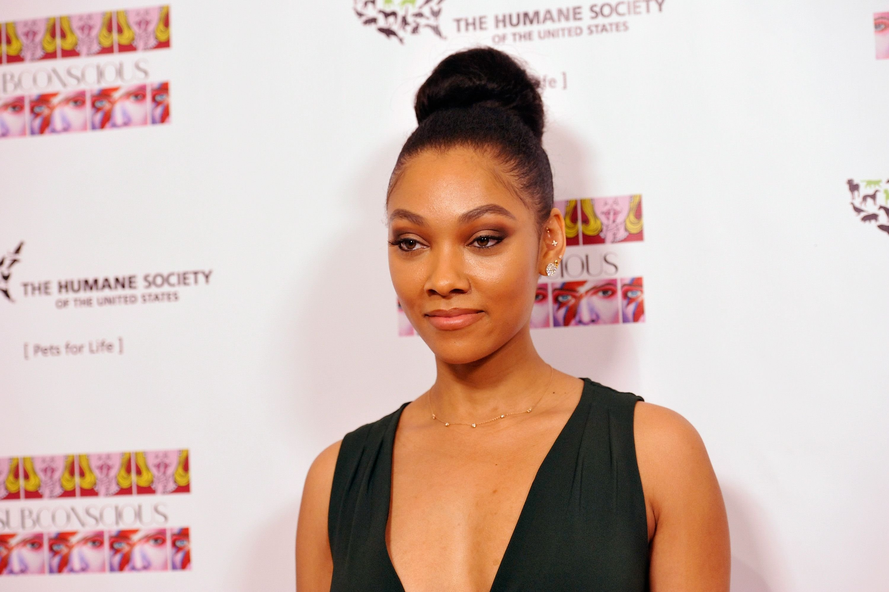 """Bria Murphy during the debut gallery opening of her art show, """"Subconscious,"""" benefiting the Pets for Life Program for The Humane Society at Los Angeles Contemporary Exhibitions on November 20, 2016 in Los Angeles, California. 