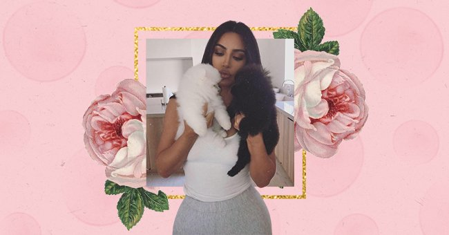 Where Are They Now: Kardashian Pet Edition