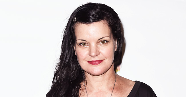 Pauley Perrette Shared a Video of an American Flag with Her Patriotic Memorial Day Message