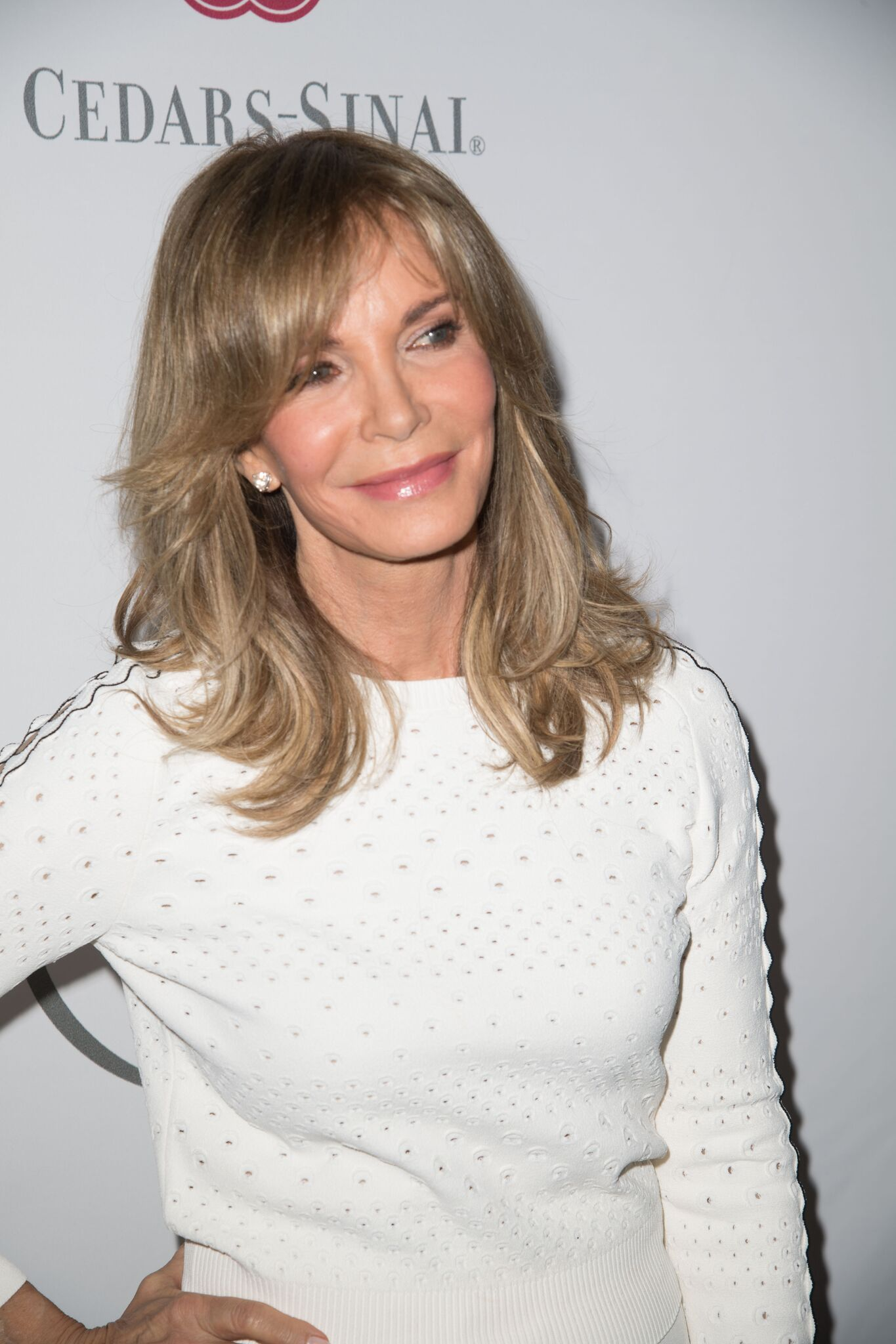 Jaclyn Smith attends the 2016 Women's Guild Cedars-Sinai Annual Spring Luncheon | Getty Images