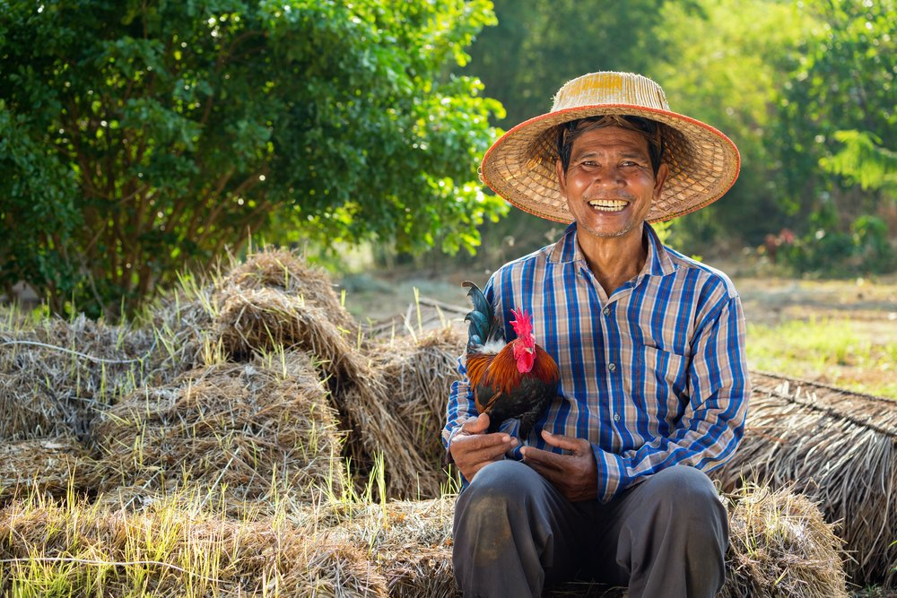 A farmer wearing rattan hat with his chicken on his lap. | Photo: Shutterstock