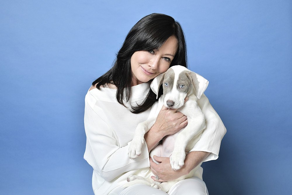 Shannen Doherty posing for a portrait at Hallmark Channel and American Humanes 2019 Hero Dog Awards in Beverly Hills, California, in October 2019. I Image: Getty Images.