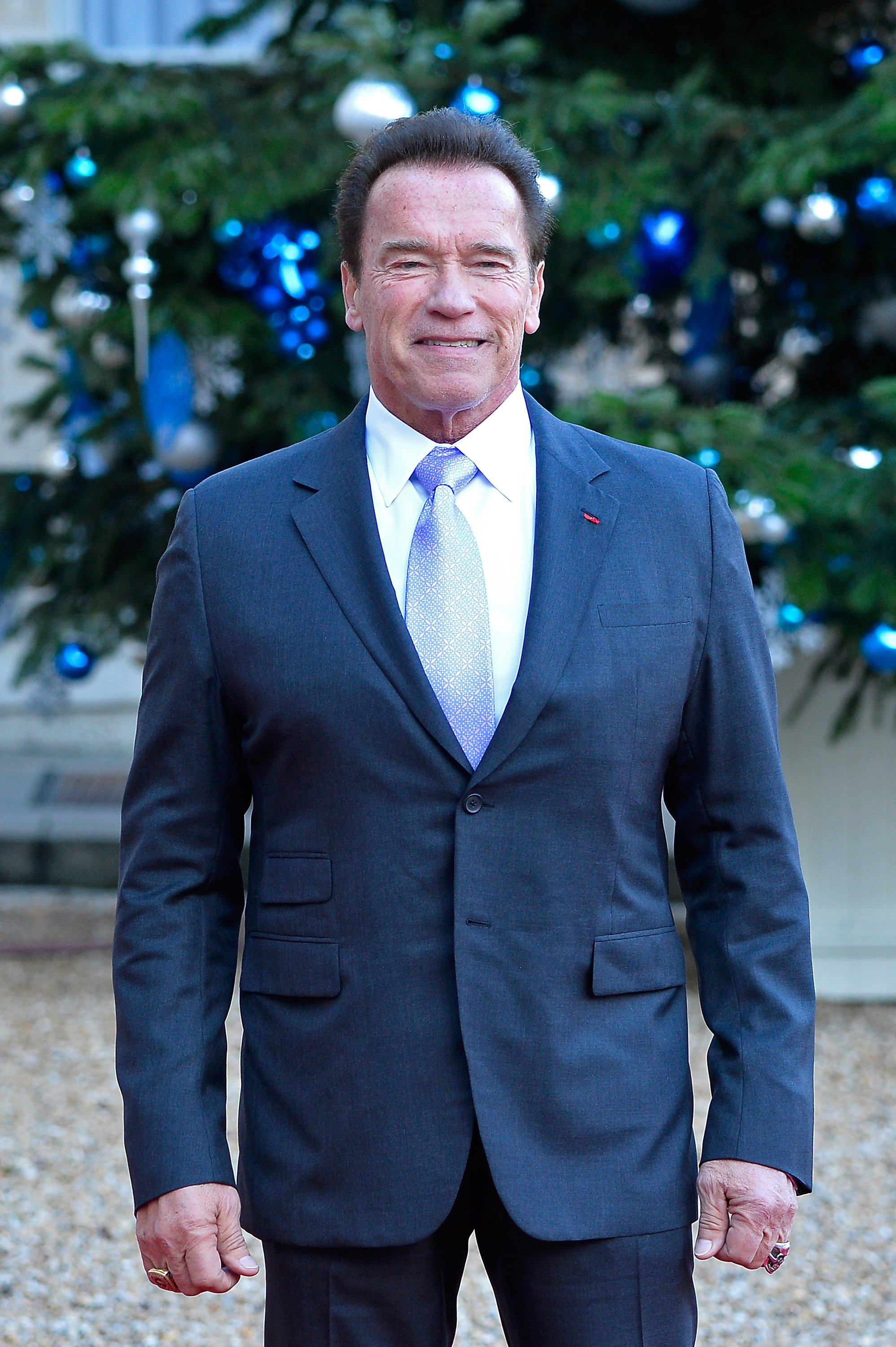 Arnold Schwarzenegger arrives for a meeting with French President Emmanuel Macron on December 12, 2017, in Paris, France. | Source: Getty Images.