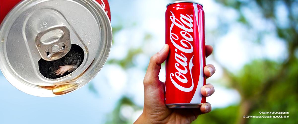 Damien, 34 ans, qui a découvert un rongeur dans son Coca-Cola, fait un témoignage poignant (Vidéo)