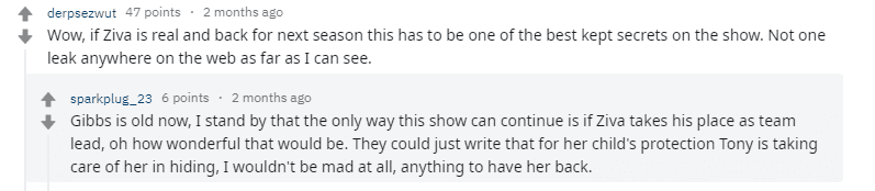 Fan theories on the possible return of Cote de Pablo's character replacing Mark Harmon's one on 'NCIS' | Photo: Reddit