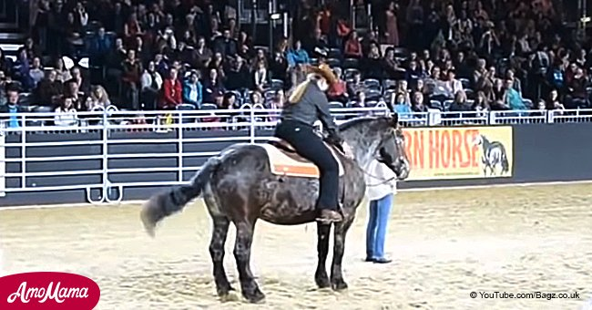 Horse hears its favorite song start and proves how easy line-dancing is