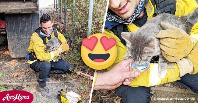 Bombero rescata un gatito de fuerte incendio y obtiene el más dulce agradecimiento
