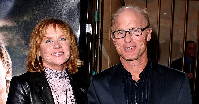 Ed Harris Is Married to Amy Madigan — Glimpse into Their Love Story That Has Lasted 36 Years